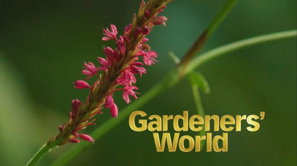 Gardener's World oct 14th 2005