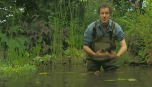 The A to Z of TV Gardening – Letter N
