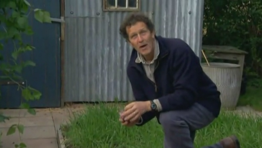 Read more about the article The A to Z of TV Gardening – Letter O