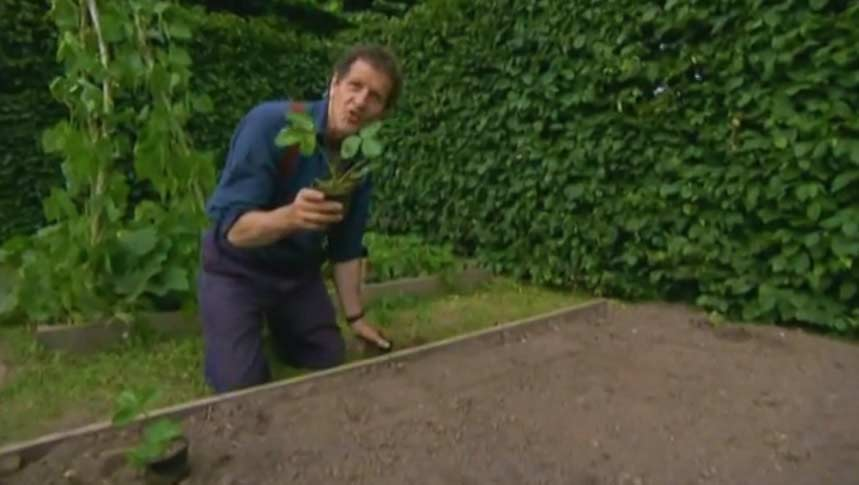 The A to Z of TV Gardening – Letter S