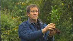 Read more about the article Gardeners World 19 October 2012