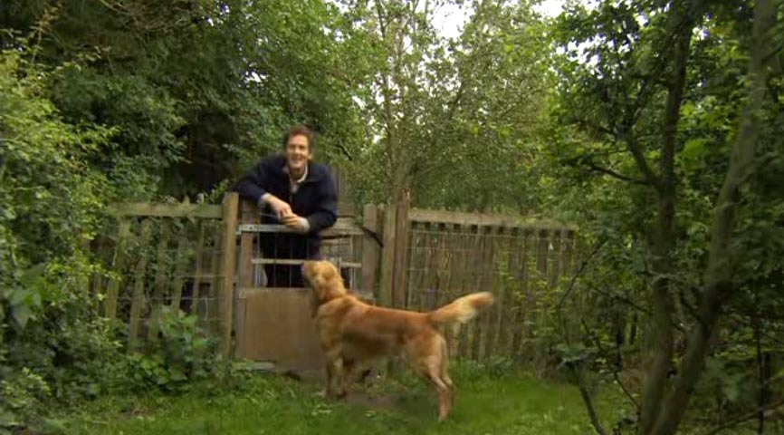 Read more about the article Gardeners World episode 22 2012