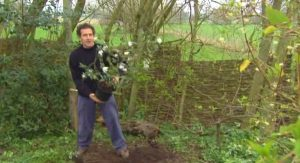 Gardeners World episode 3 2012