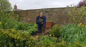 Gardeners World episode 6 2012