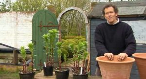 Read more about the article Gardeners World episode 8 2012