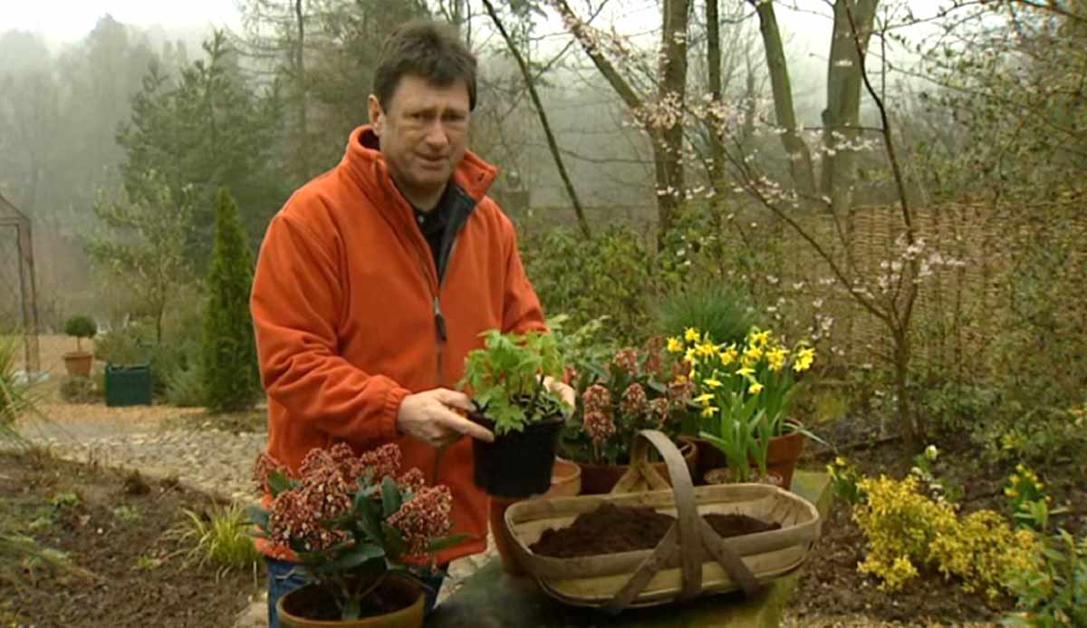 Read more about the article Gardeners World episode 2 2002