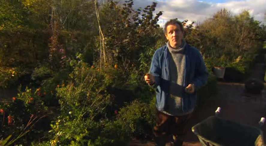 Gardeners World episode 31 2012