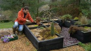 Read more about the article Gardeners World episode 4 2002