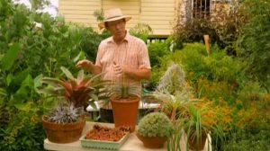 Gardening Australia episode 1 2020