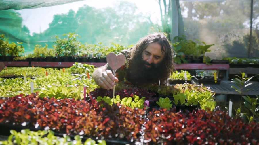 Gardening Australia episode 2 2020