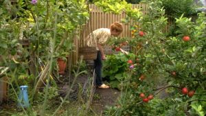 Read more about the article The Edible Garden episode 6 – The Winter Larder