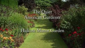 Read more about the article The Quiet American Gardener