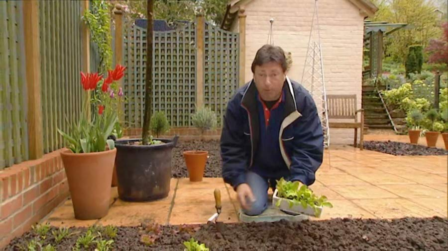 Read more about the article Gardeners World episode 10 2002