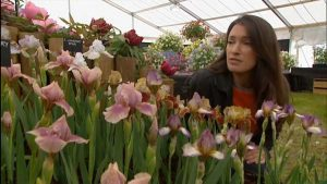 Read more about the article Gardeners World episode 11 2002