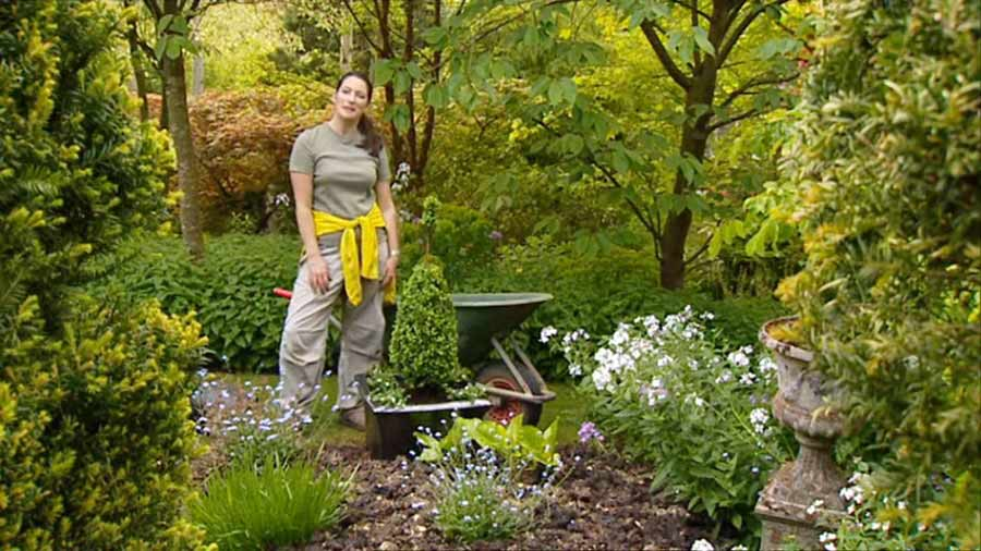 Read more about the article Gardeners World episode 14 2002