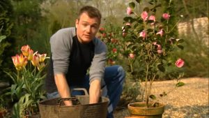 Read more about the article Gardeners World episode 9 2002
