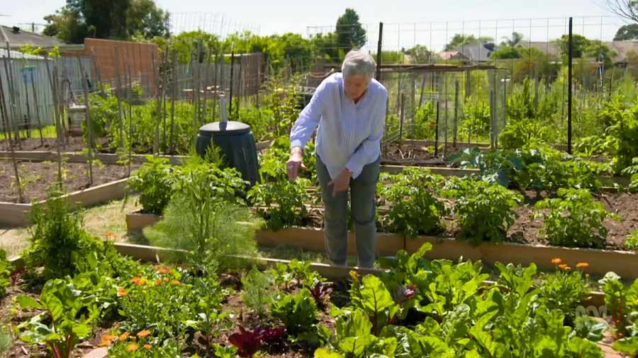 Read more about the article Gardening Australia episode 4 2020
