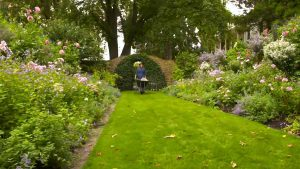 Read more about the article Gardening Australia episode 5 2020