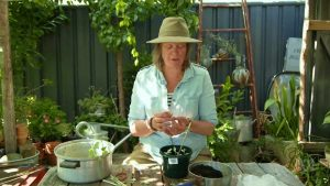 Read more about the article Gardening Australia episode 7 2020