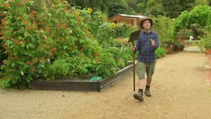 Read more about the article Gardening Australia episode 8 2020