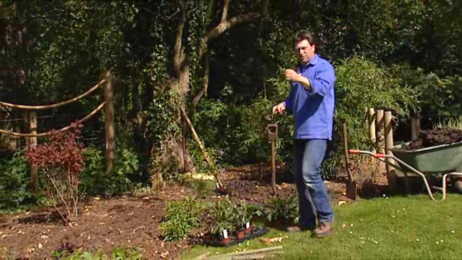 Read more about the article Gardeners World episode 15 2002