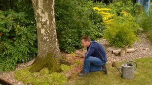 Gardeners World episode 18 2002