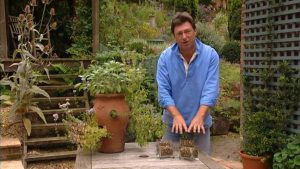 Gardeners World episode 19 2002