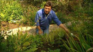 Gardeners World episode 20 2002