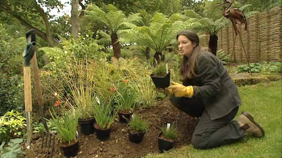 Read more about the article Gardeners World episode 22 2002