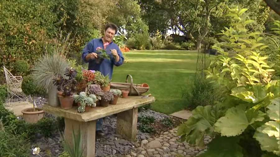 Read more about the article Gardeners World episode 24 2002