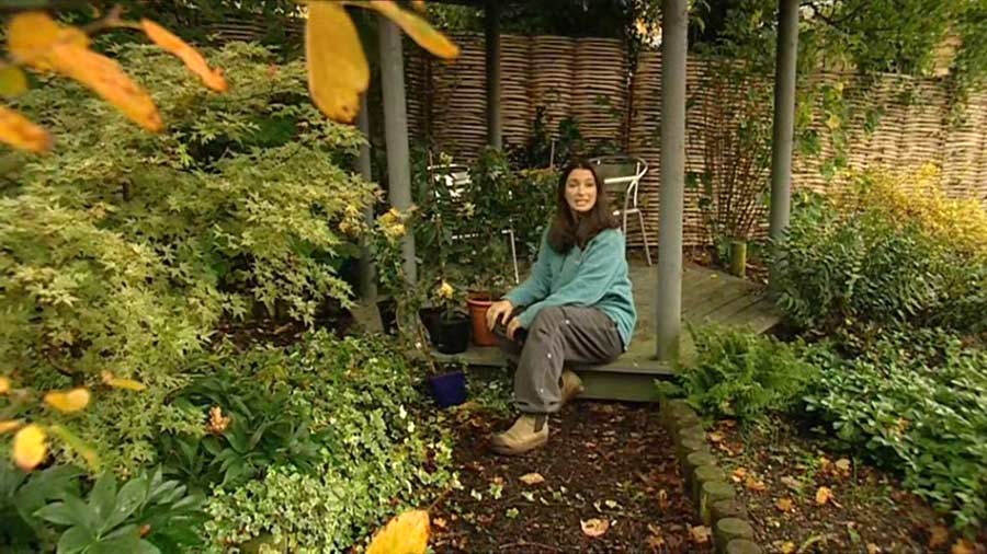 Read more about the article Gardeners World episode 25 2002