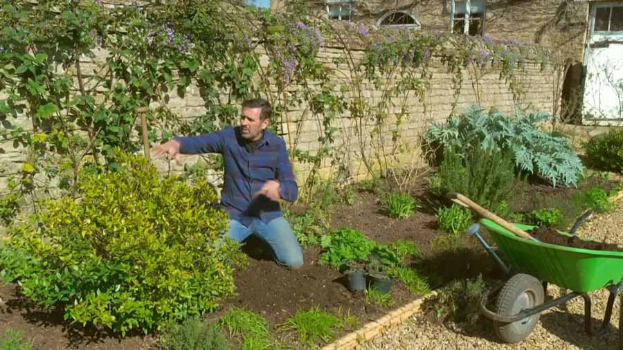 Read more about the article Gardeners World episode 4 2020
