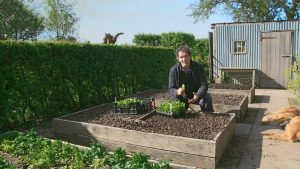 Read more about the article Gardeners World episode 6 2020