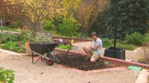 Read more about the article Gardening Australia episode 11 2020