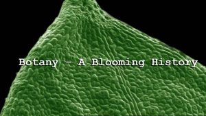 Botany – A Blooming History episode 2 – Photosynthesis