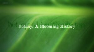 Read more about the article Botany – A Blooming History episode 3 – Hidden World