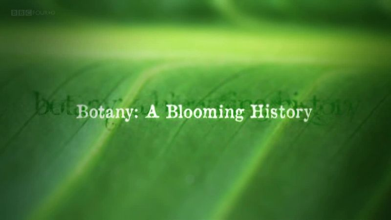 You are currently viewing Botany – A Blooming History episode 3 – Hidden World