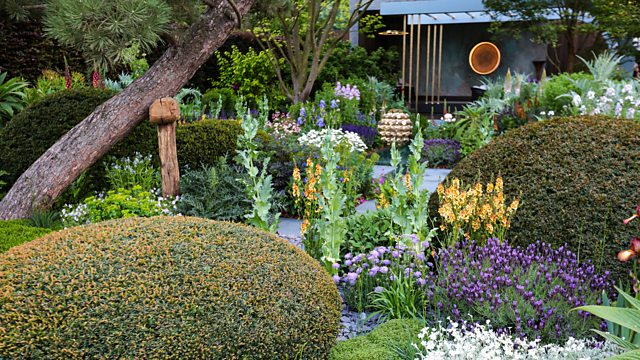 You are currently viewing Chelsea Flower Show episode 3 2020