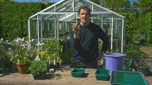 Read more about the article Gardeners World episode 7 2020