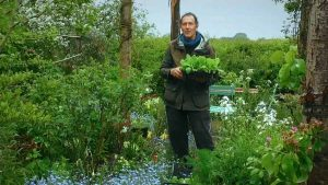 Read more about the article Gardeners World episode 8 2020