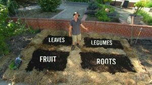 Read more about the article Gardening Australia episode 16 2020