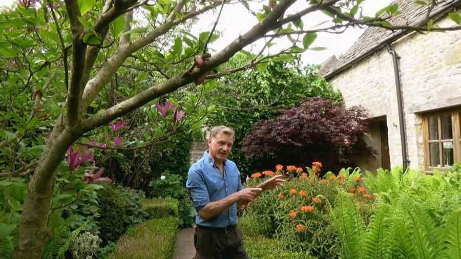 The Beechgrove Garden episode 6 2020