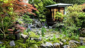 Read more about the article Chelsea Flower Show episode 5 2020