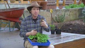 Gardening Australia episode 18 2020