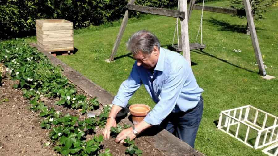 Grow Your Own At Home With Alan Titchmarsh episode 3