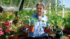 Grow Your Own At Home With Alan Titchmarsh episode 4