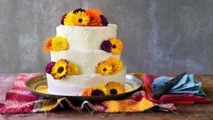 Pumpkin celebration cake
