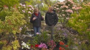 The Beechgrove Garden episode 11 2020
