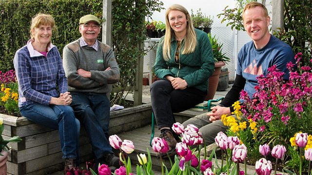 Read more about the article The Beechgrove Garden episode 8 2020