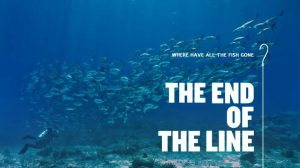 Read more about the article The End of the Line